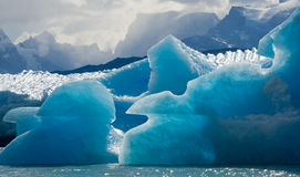 Icebergs in the water, the glacier Perito Moreno. Argentina. royalty free stock image