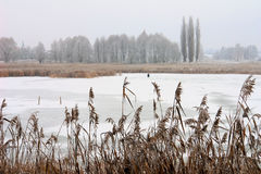 Icebound озеро Стоковое Изображение