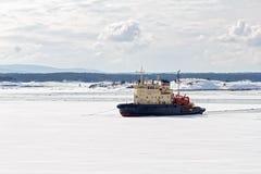 Icebreaker in het Witte Overzees Stock Foto