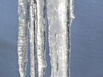 Icecles de derretimento fotografia de stock