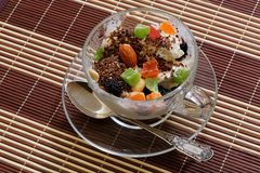 Icecream with raisins, chocolate and dry fruits Royalty Free Stock Images