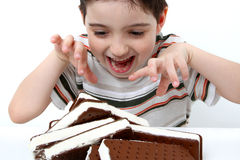Icecream Sandwich Boy Royalty Free Stock Images