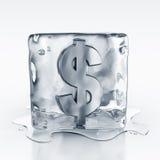 Icecube con símbolo del dólar adentro Imágenes de archivo libres de regalías