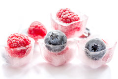 Icecubes with frozen berries on white background Stock Photography