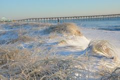 Iced beach in North Carolina Royalty Free Stock Image
