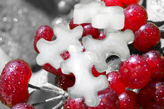 Iced berries Stock Photo