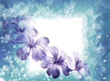 Iced blue floral background Stock Photos