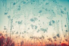 Free Iced Blue Snow Flakes On Window Royalty Free Stock Photos - 103840238