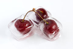 Iced cherries. Group of cherries, frozen inside ice cubes, melting Stock Photos