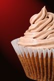 Iced Chocolate Cupcake Royalty Free Stock Photo