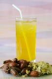 Iced Chrysanthemum Tea. Royalty Free Stock Images