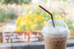 Iced coffee cappuccino in plastic cup with straw on flower garde Stock Photo
