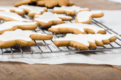Iced cookies in animal shapes Stock Photos