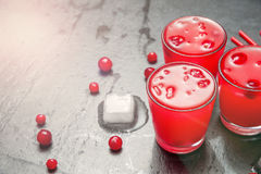 Iced Cranberry Cocktail with Vodka. Alcohol shot drink. Copyspace Stock Images