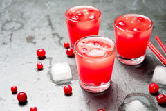 Iced Cranberry Cocktail with Vodka. Alcohol shot drink. Copyspace Royalty Free Stock Photo