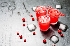 Iced Cranberry Cocktail with Vodka. Alcohol shot drink. Copyspace Royalty Free Stock Photography