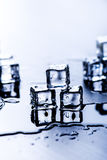 Iced cubes melting on a blue table with reflection. Water. Melting of ice. Stock Image