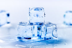 Iced cubes melting on a blue table with reflection. Water. Melting of ice. Royalty Free Stock Images