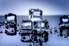 Iced cubes melting on a blue table with reflection. Water. Melting of ice. Royalty Free Stock Image