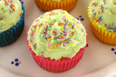 Iced Cup Cake Royalty Free Stock Photo