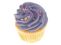 Iced Cupcake Stock Photos