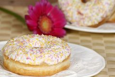 Iced doughnut. Two white iced doughnuts with coloured sprinkles Stock Photography