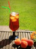 Iced drink in the garden Royalty Free Stock Photos
