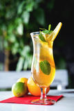 Iced drink with mint and citrus fruit. Selective Stock Photos