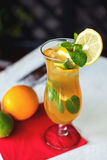 Iced drink with mint and citrus fruit. Selective Royalty Free Stock Image