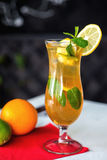 Iced drink with mint and citrus fruit. Selective Royalty Free Stock Photography