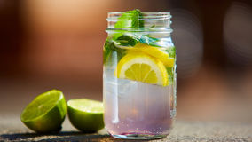 Iced drink with mint and citrus fruit Royalty Free Stock Photo