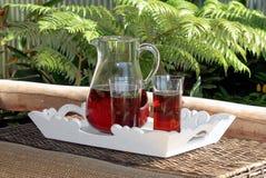 iced förnyande tea arkivbilder