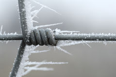Iced fence Royalty Free Stock Photos