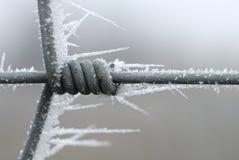 Iced fence royalty free stock photos