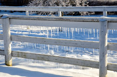 Iced fence Royalty Free Stock Photography