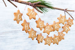Iced gingerbread cookies hanging off a branch, simple DIY christ. Gingerbread stars with Merry Christmas hanging off a branch as xmas wall decoration, home DIY Stock Images
