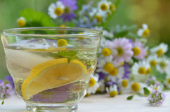 Iced herbal water with lemon and mint Royalty Free Stock Image