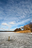 Iced lake in denmark Stock Image