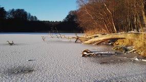 Iced Lakeside Royalty Free Stock Photo