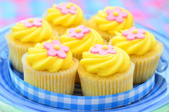 Iced lemon cupcakes Stock Images