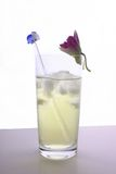 Iced Lemon Lime Soda and Crystal Stirrer. Iced Lemon Soda served with orchid in a tall glass royalty free stock photography
