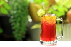 Iced lemon tea Royalty Free Stock Image