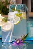 Iced lemonade Royalty Free Stock Photo