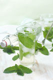 Iced mint water on a table Stock Image