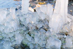 Iced over grass in an abstract beautiful form Royalty Free Stock Images