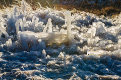 Iced over grass in an amazing form with water Stock Image