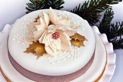 Iced round cake. Stock Photo