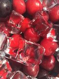 Iced sweet cherry stock photography