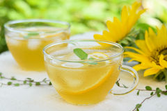 Iced te in garden. Glass of iced tea in garden royalty free stock images