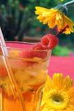 Iced tea stock photos